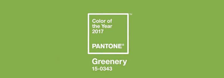 Pantone color, 360 Web Designs, Pantone Color 2017