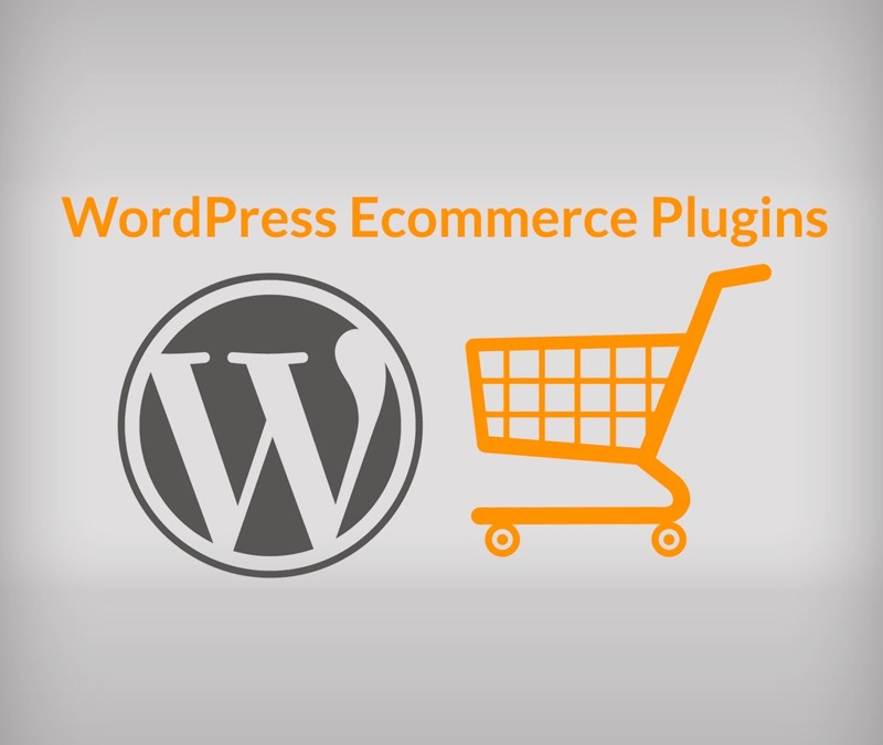 eCommerce | WordPress | Plugins | 360 Web Designs
